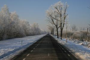2009-01-10 winterfoto's (57)