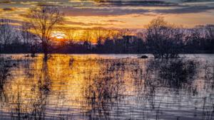 Twan van den Hombergh Foto1  Hoogwater Maas bij zonsondergang