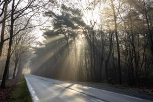 Ari Verbruggen , Foto 2 Zonnenstralen op de weg