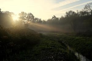 Bert Jacobs Foto1  zonsopkomst bij ochtendnevel