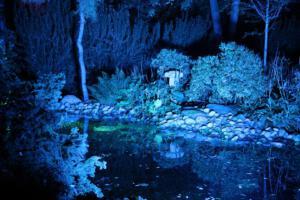 Huub Schroeder Foto 2, Kasteeltuinen avond 2