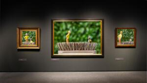 Peter HilbertsFoto 3, Kuifje in het Venloos museum