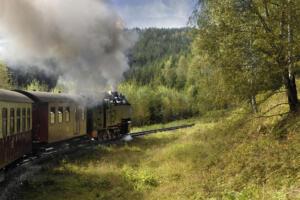 09 Heinz SchmetzRijdende smalspoor trein